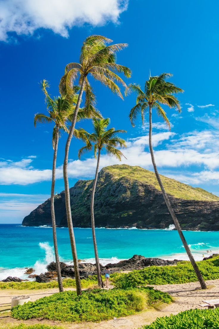 Makapu Beach Park Oahu - Garrypeppergirl Postcards from Oahu. http://garypeppergirl.com/2015/01/postcards-from-oahu
