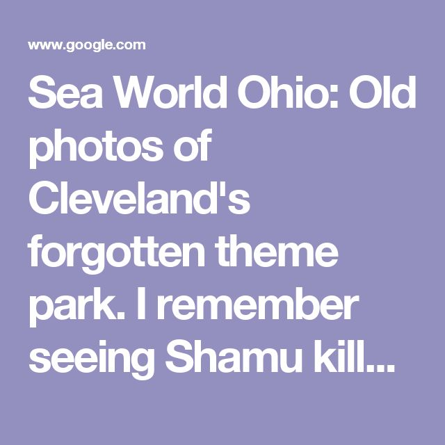 Sea World Ohio: Old photos of Cleveland's forgotten theme park.  I remember seeing Shamu killer whale when I was kid. Ohio sea world closed in 2001.