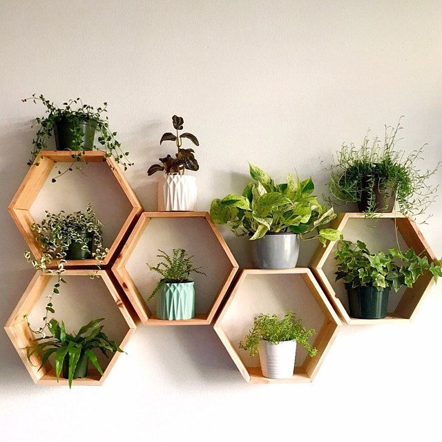Set of 6 Medium 2″ Deep Hexagon Shelves, Honeycomb Shelves, Floating Shelves, Geometric Shelves