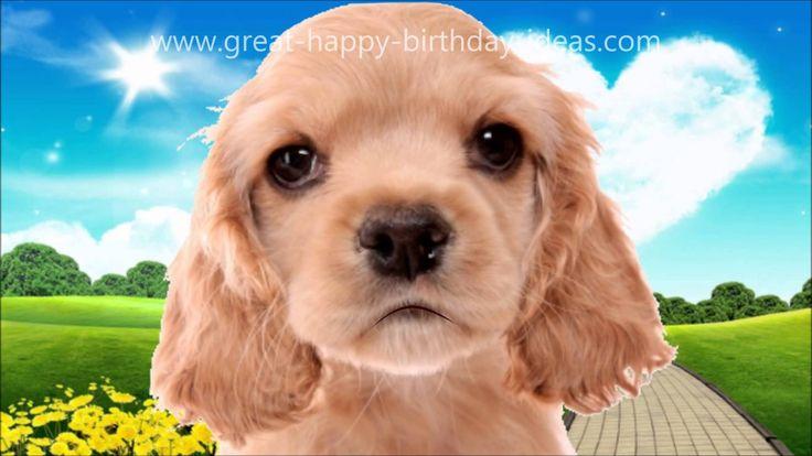 Cute dog sings happy birthday