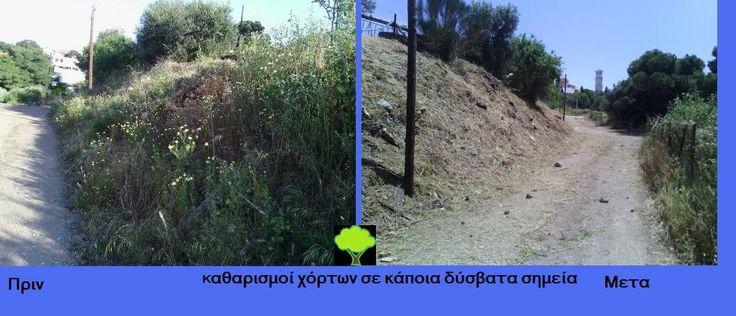 Υπαίθριες δραστηριότητες  ΚΟΠΗ ΧΟΡΤΩΝ ΑΤΤΙΚΗ www.hortokoptiki.gr