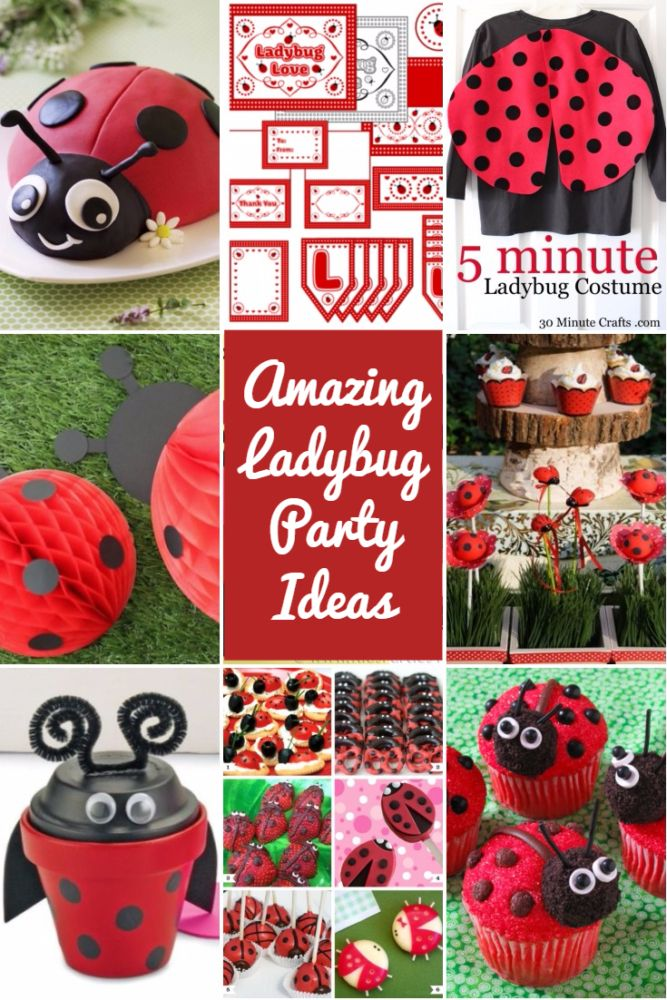 How to Have a Lovely Ladybug Party #ladybug #party