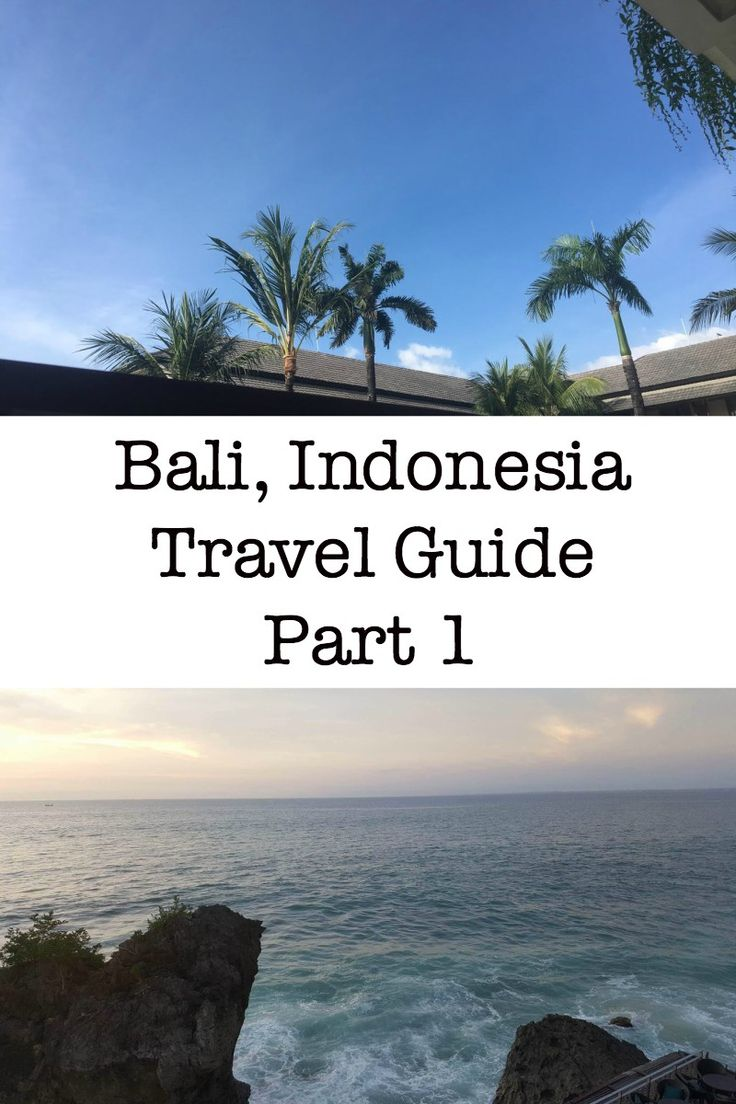 Bali, Indonesia Travel Guide Part 1 - In this travel guide you will read about where the best places are to eat, stay and what the best activities are to see and do, you will also read about the different transportation options there are available and more! http://borntobealive.blog/welcome/bali-indonesia-travel-guide-part-1/
