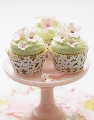 cupcakes - love the wrappers sakura-matsuri-brunch amazing-food