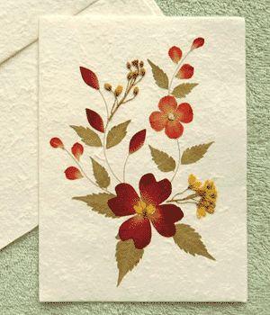 Tarjeta flores secas 1