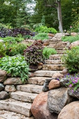 Rugged stone steps and boulders climb into forest-like Landscaping
