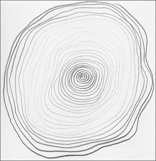 Line Drawing Exercises : Curving line drawing exercises that will help you