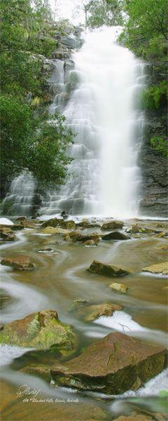 Silverband Falls Location:Halls Gap, Grampians, Victoria.   Located in the Grampian Mountains, Victoria. Australia . photographer R.A.Stanley