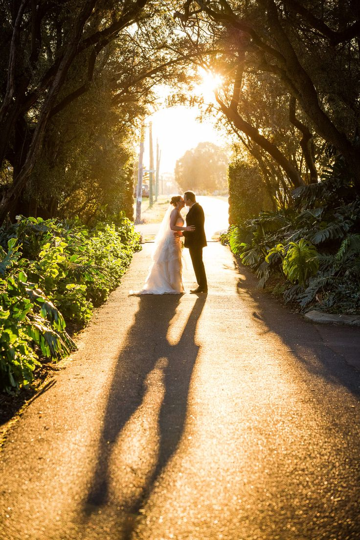 The wedding couple walks through a tree tunnel to the Caversham House's entrance.