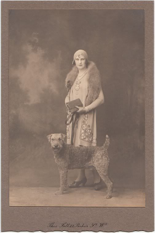 vintage airedale