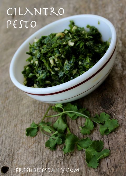 Cilantro Pesto (Cilantro, Garlic, Jalapeno, Lime, Olive Oil) -Great for freezing and using later
