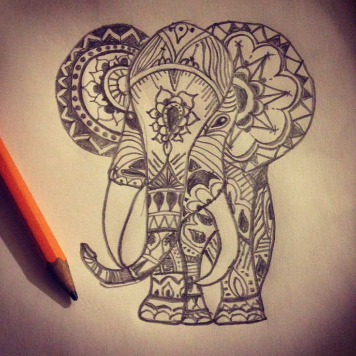 Elephant drawings (after an example of course) | Actually ...