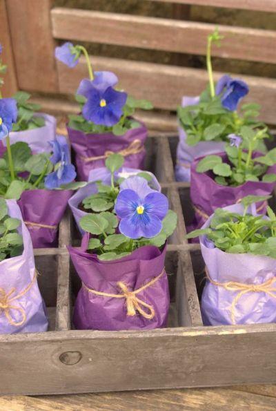 Flowers For Bridal Shower Favors : Best shower favors ideas on bridal