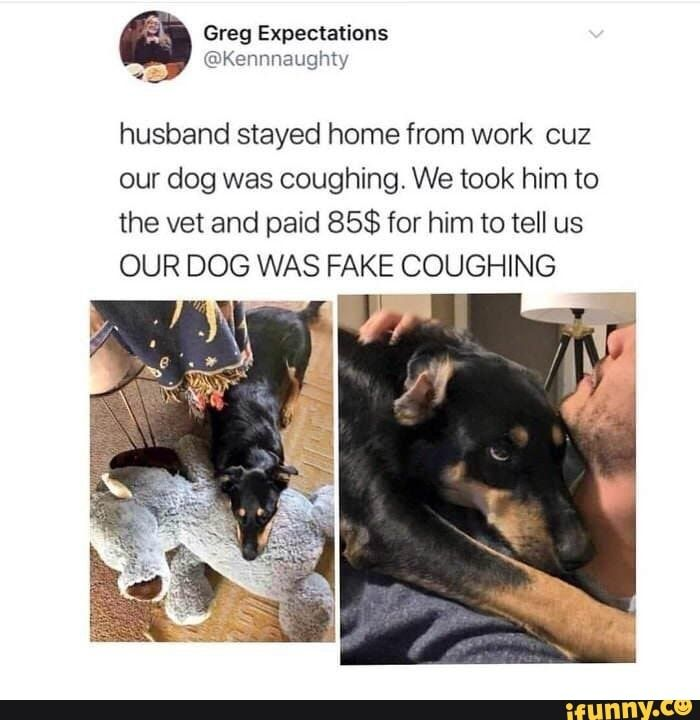 Husband Stayed Home From Work Cuz Our Dog Was Coughing We Took