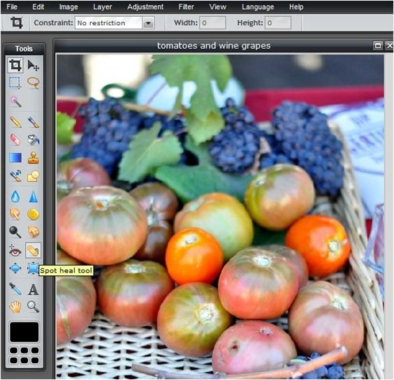 "How to use the ""blemish fix"" tool in PicMonkey"