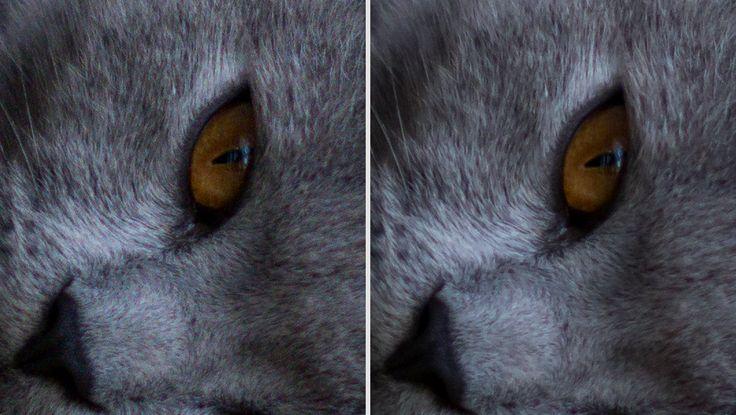 white eyed husky: OBRÓBKA W ADOBE LIGHTROOM - CZĘŚĆ II - KADROWANIE, BALANS BIELI, PANEL BASIC, DETAIL, KRZYWE, WINIETA.