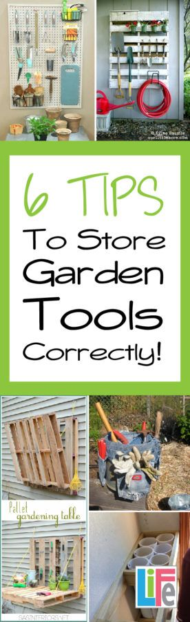 Make those tools last by taking care of your tools properly.  CLICK to learn how to store garden tools correctly.