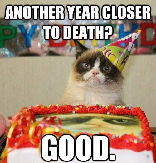 Birthday Cat Meme Generator: 29 Best Happy Birthday Cards Images On Pinterest