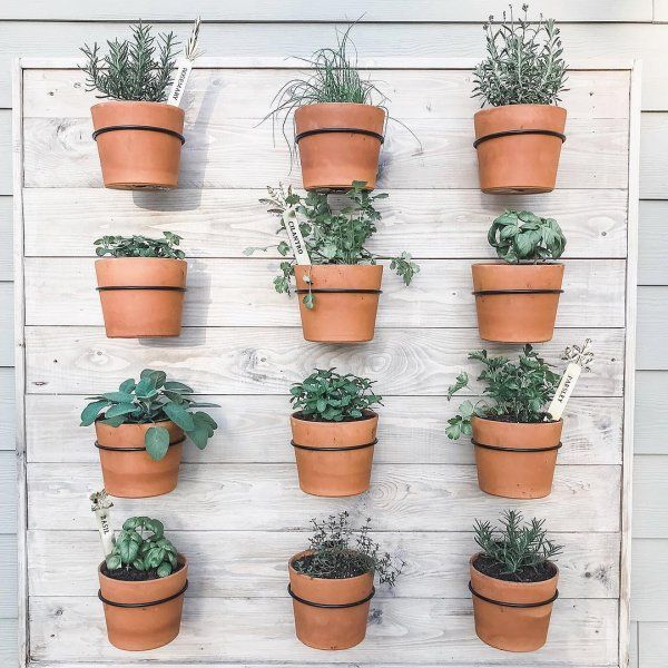 Wall Planter Hook Reviews Crate And Barrel Wall Planter Diy Herb Garden Indoor Plants