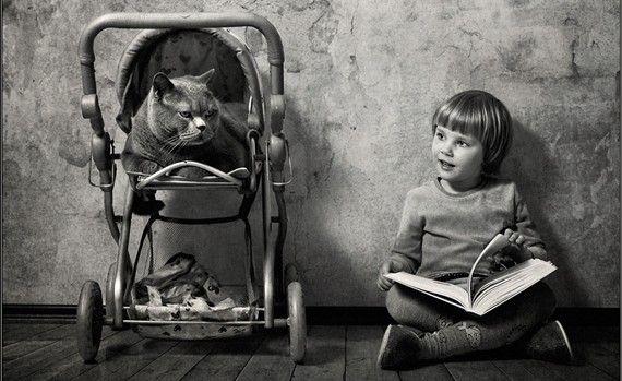 Gatos y niños, los dos conceptos más virales #kids #cats #socialmedia
