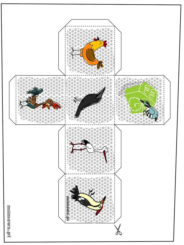 kostka-ptaszki