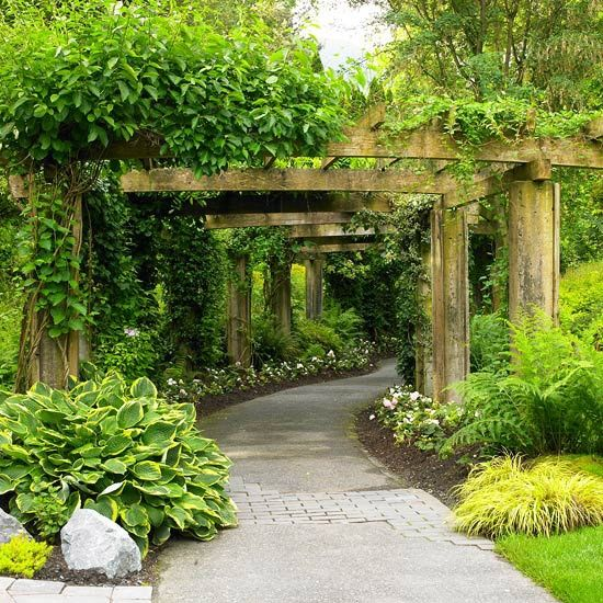 I want a walkway like this from my house to the barn. Pergola covered with something that stays beautiful in summer and winter.