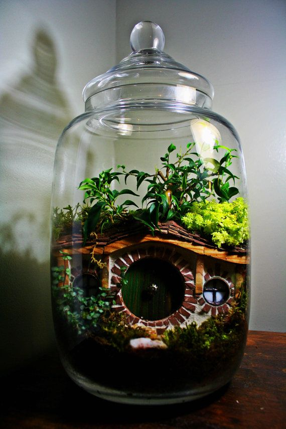 Hobbit Inspired Terrarium - Hobbit Houses Inspired