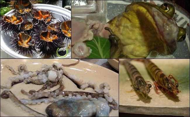 10 Makanan Hewan masih Bernafas yang Dihidangkan di Meja