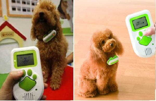 10 Cool gadgets for your pet - http://trstil.com/10-cool-gadgets-for-your-pet/