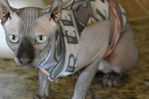 Lucky Dice: Tattoo Inspired Sphynx Cat Clothes. Tattcat™ is a lightweight illusion outfit for your furry or hairless cat or dog clothes.