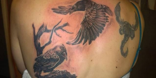 Die Vögel sind von uns - Tattoostudio Clash of Arts - Bielefelder Straße 18 - 33104 Paderborn (Ortsteil Schloß Neuhaus) - Tel.: 05254-3860 - info@tattoos-paderborn.de