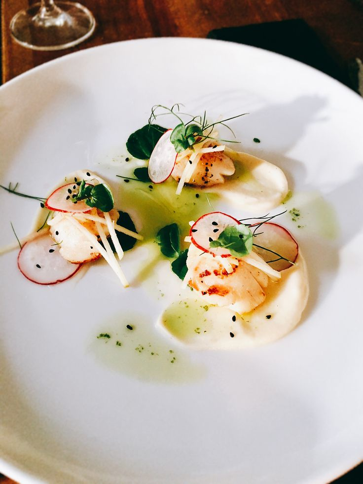 Scallops with radish, Apple, fennel oil, fennel, watercress, nigella seed and celeriac purée   #personalchef #personalcook #personalchefs #personalchefservices #privatechef #privatecook #privatedining #somerset #somersetcook #somersetfood #somersetchef #somersetfoodie #dorset #scallops #celeriac #celeriacpuree #apple #radish #nigellaseeds #onionseed #fennel #fenneloil www.stevejamesltd.com