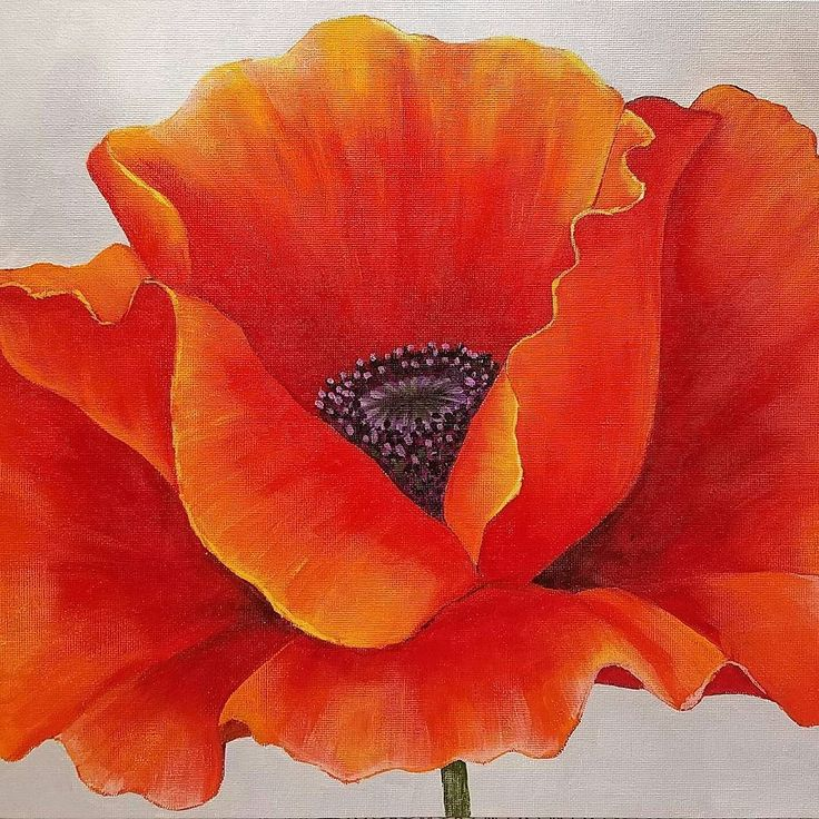 Poppy painting tutorial. What a fun project this was! #angelafineart free Georgia O'Keeffe inspired Poppy Painting