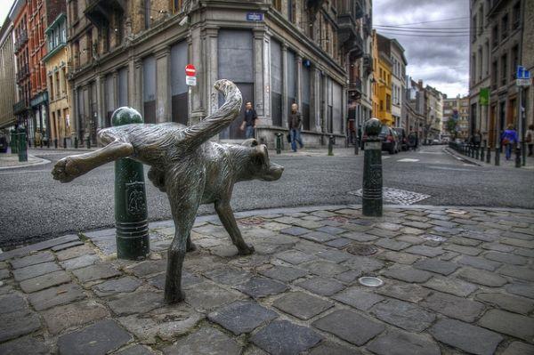 De plassende beeldjes in Brussel zijn de hond: Zinneken Pis gelegen aan de Kartruizersstraat in de Dansaertwijk, Het Manneken Pis op de hoek van de Stoofstraat in het centrum en Jeanneken Pis het vrouwelijke plassende beeldje gelegen in de Getrouwheidsgang in de Beenhouwersstraat.