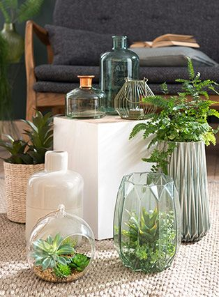 Tendencia decorativa Urban Garden | Maisons du Monde