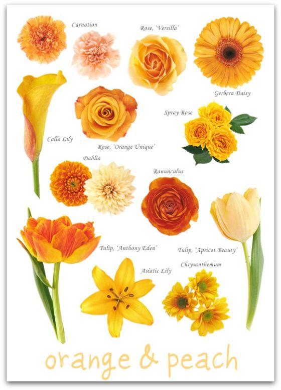 wedding flowers by colourLiving Fresh Flower Studio & School Blog | Living Fresh Flower Studio & School Blog