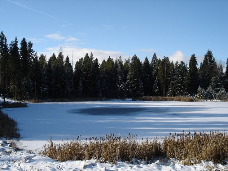 Swan Lake Frozen Blingee | Seeley Lake, MT : Seeley Lake, MT Frozen pond on Grandview Dr photo ...