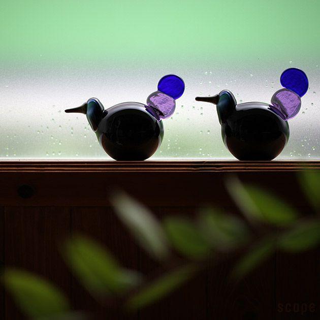 iittala (Iittala) / Birds by Oiva Toikka (Bird by Oiba-Toikka) Kyhjyu