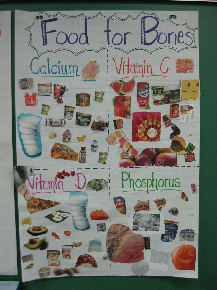 Terri's Teaching Treasures: No Bones About It, Science is Fun!