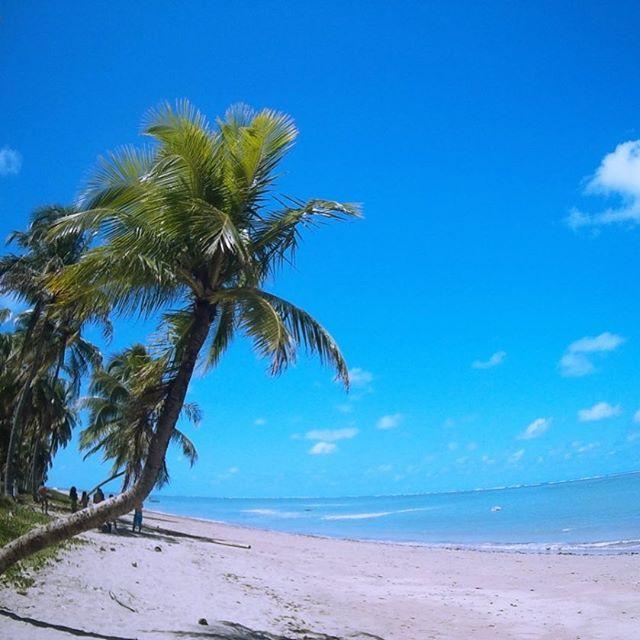 Um paraíso chamado Praia do Patacho, pertinho de São Miguel dos Milagres, em Alagoas. Tem dicas de como visitar no blog (link na bio). ⛱ . .  Dianaviaja.com #dianaviaja #praiadopata #saomigueldosmilagres #seashore #wanderlust #viagem #viajando #travel #traveling  #ferias #instatravel #instago  #trip #travelling #tourism #brazil #brasil #alagoas #maceio #photooftheday #nordeste  #igtravel  #travelblogger #viagem #missaovt #blogdeviagem #praia #beach #missaoVT