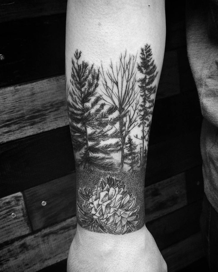 Another session done on Austin's Maine themed sleeve :) #wickedgoodink #Maine#tattoo#tattoos#tattooed#tattoo#ink#inked#trees#pinecone #nature#thegreatoutdoors #art#artist#nopainnogain #electrumstencilprimer #silverbackink#cheyennetattooequipment#thatjusthappened#yes#thanks#getsome