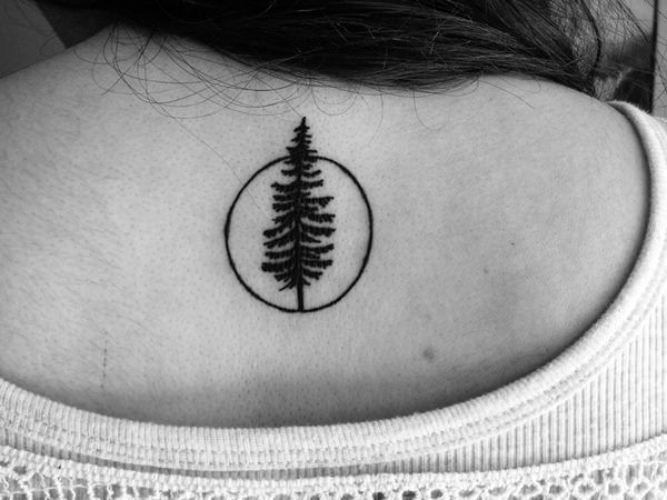 tree tattoos (19)