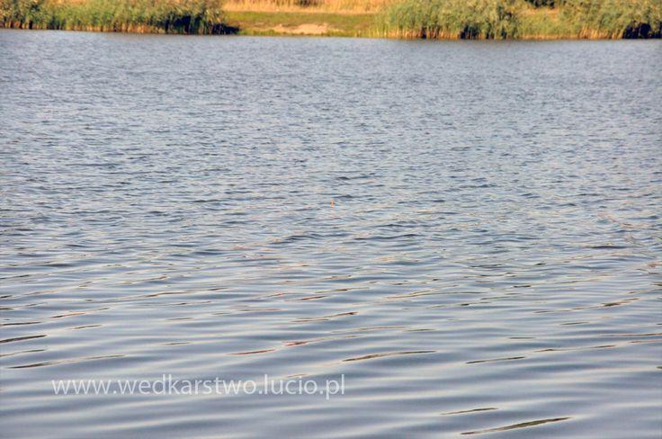 #lake Niedźwiadek in #Poland #fishing #wędkarstwo #wedkarstwo