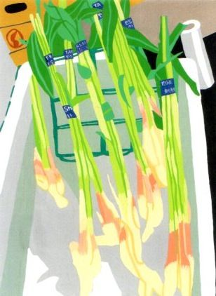 葉生姜。以前写真に撮っていたものを描いてみました。初夏でしょうか…