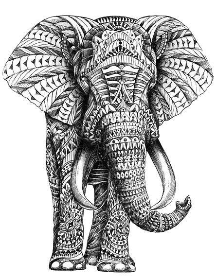 графическая стилизация животных