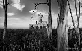 Autor: Juan Cañete. Imagen registrada por transformación. A través de la relación del soporte fotográfico y el conformante paisaje.