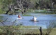 Country NSW / Warrumbungle Area / Quambone / The Macquarie Marshes Nature Reserve