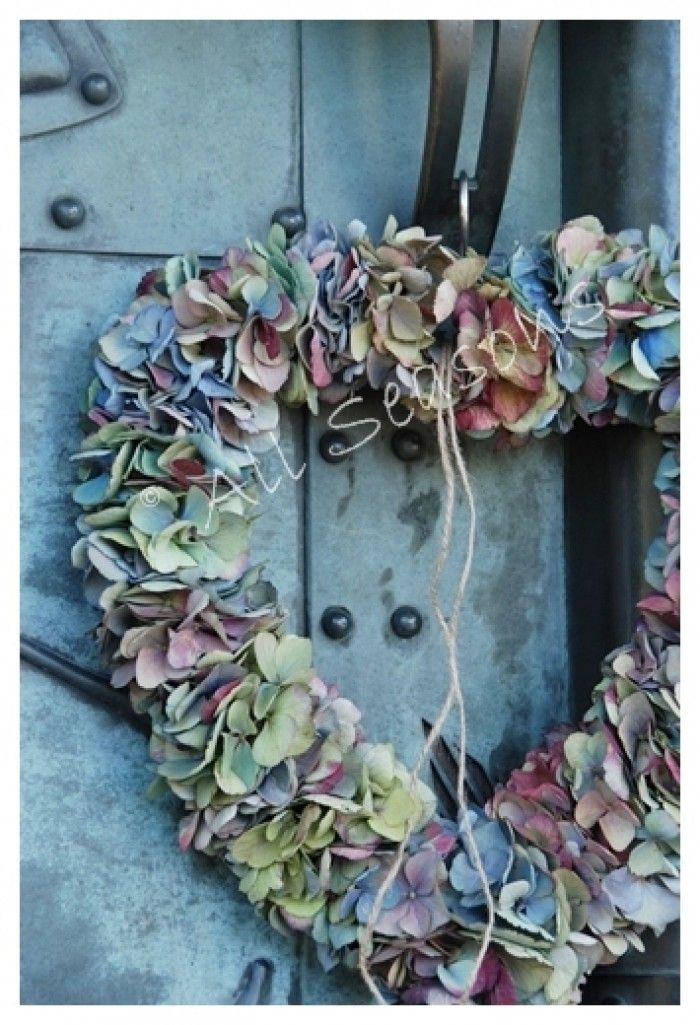 mooi hart van hortensia in prachtige vergrijsde tinten
