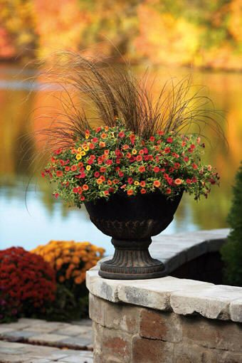 Fall container planting; grasses and fall flowers.