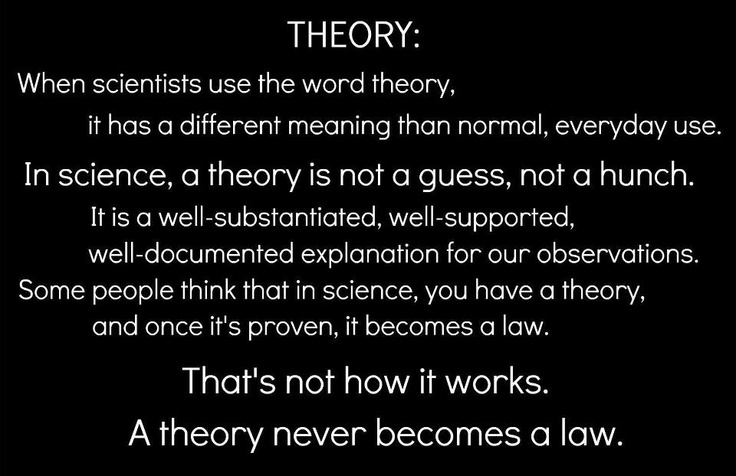 the theory of evolution interpretation by I think we can all agree that the most wayward interpretation of modern synthesis aka evolution, is by those who have neglected to do their homework on the subject and fully inform themselves prior to criticizing said theory.